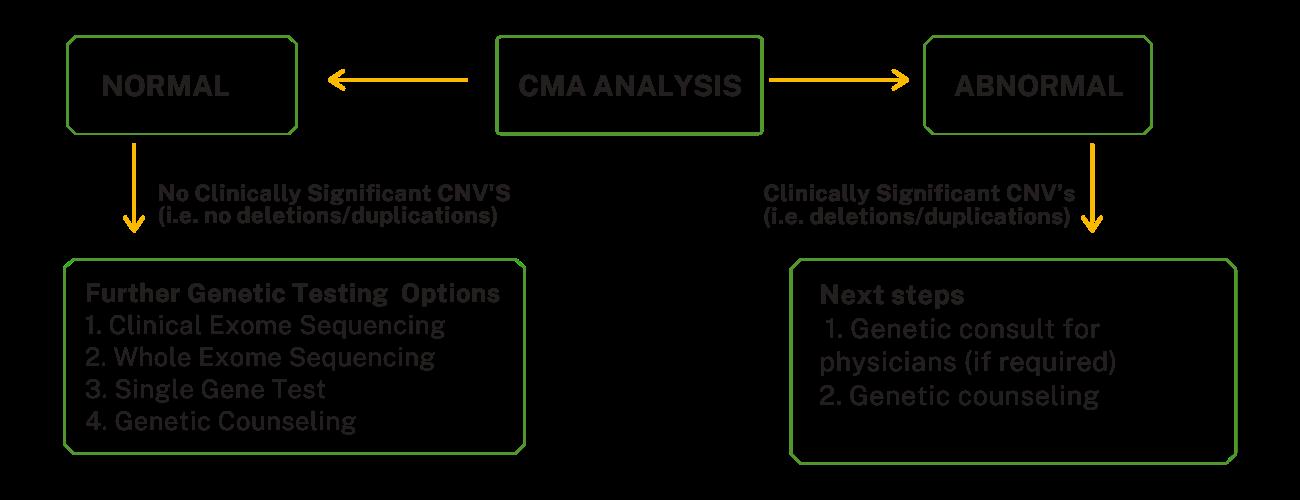 CMA-LP-Mod2