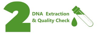 dna-extraction